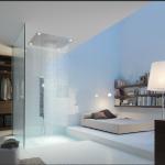 Bathroom Remodel: Bathroom Shower Options