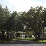 Pompano Beach: Palm Aire Kitchen Remodel – The Oaks Course