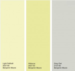 Yellow and Gray color palette - Jennifer Ott - Houzz.com