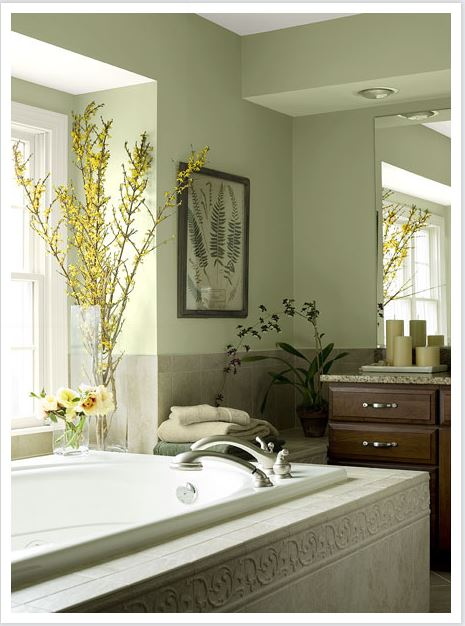 benjamin moore - natural green - bathroom